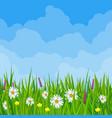 spring meadow cloudscape vector image