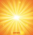 Sun rays design vector image vector image
