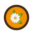 sweet flower isolated icon vector image