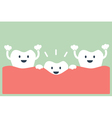 teeth grow vector image vector image