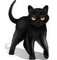 Black Cat Realistic vector image