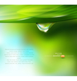 drop of dew on a background vector image vector image