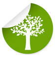 eco label with tree vector image vector image