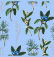 seamless pattern with botanical pines vector image vector image