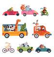 animal transport fun cartoon car cute drivers vector image vector image