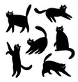 black cats silhouettes cartoon set vector image