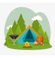 Camping vacation and travel vector image vector image