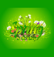 floral spring background with text letter ornament vector image vector image