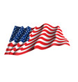 usa flag vector image
