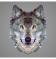 Wolf low poly portrait vector image vector image