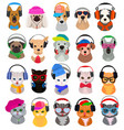animal headphones cat or dog dj in vector image