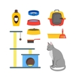 Cartoon Cat Equipment Set vector image vector image