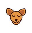 cute face kangaroo animal cartoon icon vector image vector image