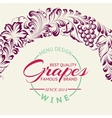 Grapes design for wine menu vector image vector image