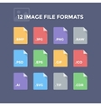 Image File Formats vector image