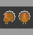 turkey in front and side view vector image vector image