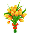 yellow tulips with ribbon vector image