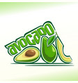 avocado fruits still life vector image vector image
