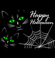 black cats on black background with cobweb white vector image