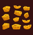 cheese with holes cartoon dairy food vector image