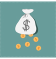 Dollar coins falling out of the bag Success concep vector image
