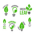 isolated green light bulb spring leaf icion vector image vector image
