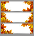 set of autumn leaves banners vector image vector image