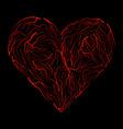 vein heart symbol icon design beautiful isolated vector image