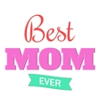 Best Mom Ever icon cartoon style vector image