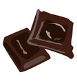 chocolate on white background vector image vector image