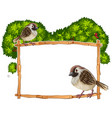 frame template with two sparrows vector image