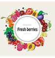 round frame with garden berries vector image