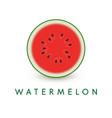 watermelon icon summer healthy food vector image vector image