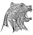 zentangle stylized doodle of bear head vector image