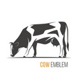 a stylish spotted holstein vector image vector image