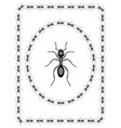 ant insect design
