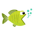 cute cartoon fish with blowing bubbles vector image vector image