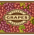 Retro Grapes Harvest Label vector image vector image