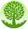 round tree vector image