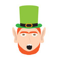 avatar of amazed irish elf vector image