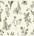 pattern of the sketches wildflowers vector image