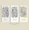perfume collection banners vector image vector image