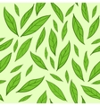 Seamless pattern with green tea leaves vector image