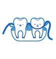 teeth cartoon and dental floss between them and vector image