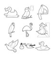 birds icon set outline style vector image