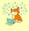 cute dog of welsh corgi learning with laptop vector image vector image