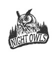 the night owls vector image vector image