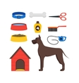 Cartoon Dog Equipment Set vector image vector image