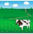 cow grazes on meadow vector image