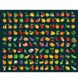 fruit and vegetables logo design template vector image